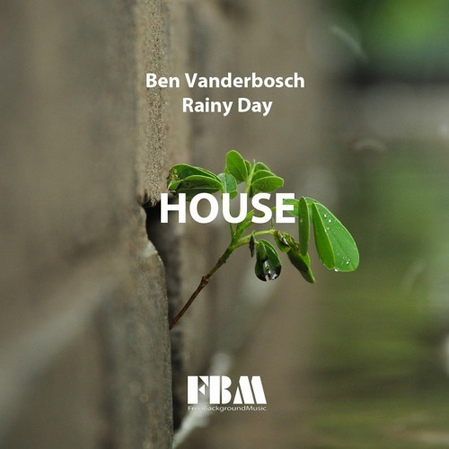 Ben Vanderbosch - Rainy Day [FreeBackgroundMusic]