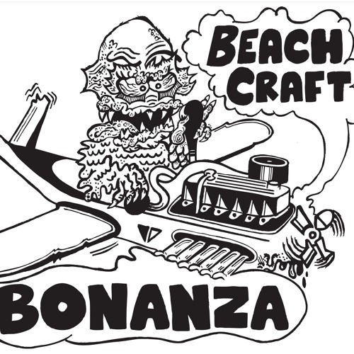 Beach Craft Bonanza - Undecided