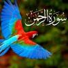 Surah Ar Rahman With Urdu Translation, Listen & Download MP3 Audio Online