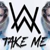 Alan Walker - Take Me With You - #Vish Remix