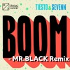 Tiësto & Sevenn - BOOM (MR.BLACK Remix)