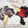 Tricky feat. Mina Rose - Running Wild (Urbanski Remix)