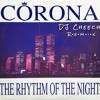 Rhythm Of The Night - DJ Cheech REMIX mp3