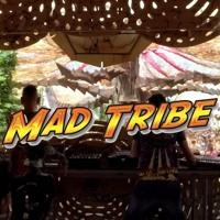 Mad Tribe Live At Ozora 2017 Artwork