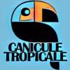 Lions Milk #130- Philippe Noel (Canicule Tropicale)// Radio Campus Paris 93.9fm