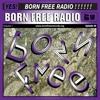 BORN FREE Radio 8 - Samo DJ & Daniel Savio (aka Over The Hill)
