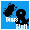 Episode 25 - Thankful for Bugs
