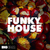 Funky House | 1,6 GB Of Kits, Spire Presets, Drums, Loops & More!