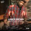 JUNIOR BROWN Live @ The Bower Sun Nov 12, 2017