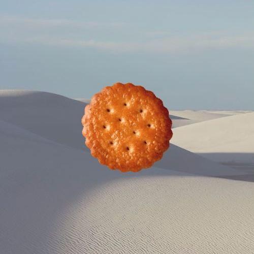 砂漠の中のビスケット biscuit in desert