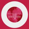 Vato Gonzales - Sonic Boom (Feat. Kris Kiss) (Xicors Big Room Edit)