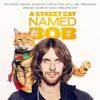 A Street Cat Named Bob - Satellite Moments (Light Up The Sky)