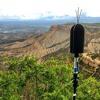 Coyotes and Dawn Chorus -- Mesa Verde National Park