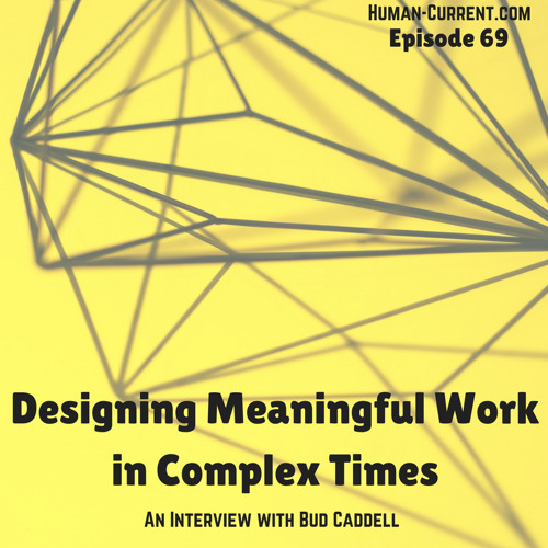 069 - Designing Meaningful Work in Complex Times