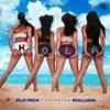 Download Flo Rida Ft. Maluma – Hola Mp3
