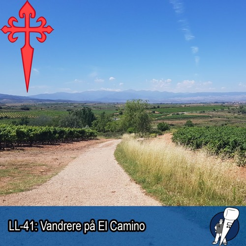 LL-41: Vandrere på El Camino
