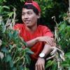CODET - DUGEM FULL INDONESIA TOP 2017 [ DWI ANDRIYANTO ]