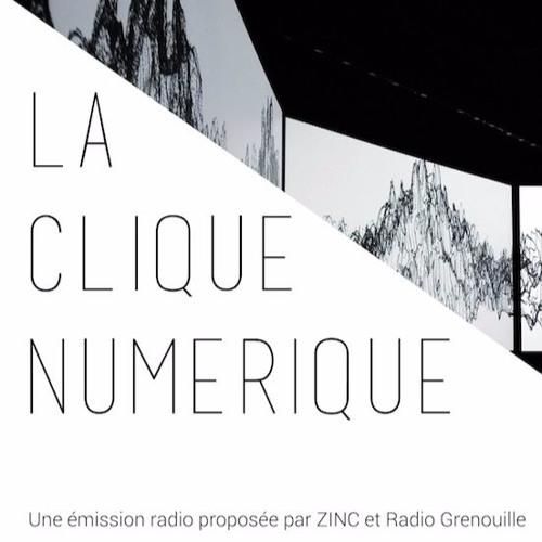 La Clique Numérique #21 - ZINC au festival DataBit.Me - David Lepolard, Systaime, Atelier LUMA