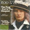 The First Cut Is The Deepest - Rod Stewart - Sepehr Eghbali Cover