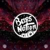Bass Nation Mix 2017 Extreme Bass Boosted Music Mix
