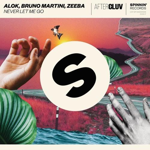 Baixar Alok & Bruno Martini & Zeeba - Never Let Me Go (Nezzi Mashup)