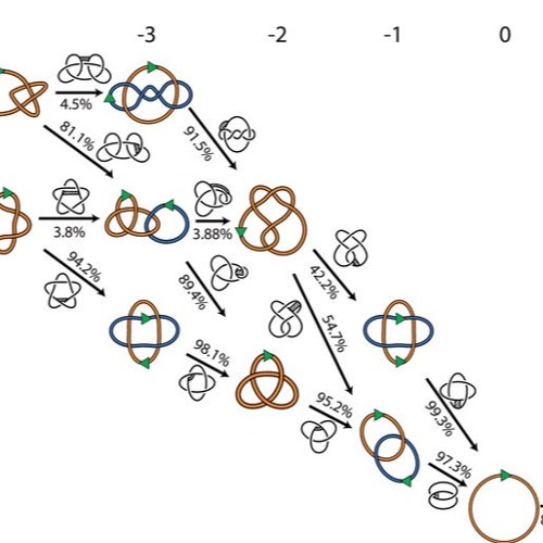 Knots, Math and Reconnection in DNA