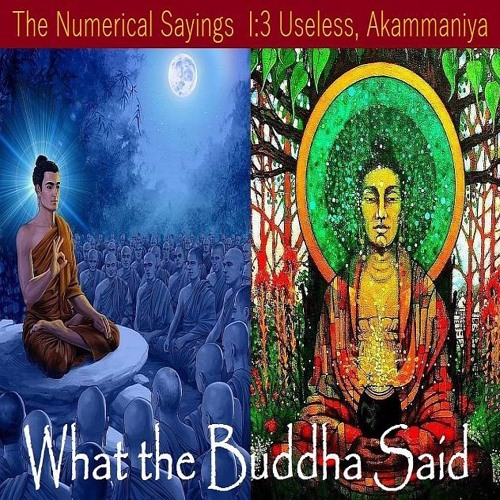 Guided Meditation on The Useless Mind AN 1 - 3