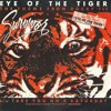 Survivor Eye Of The Tiger Hardwell And Sephyx Remix Mp3