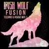 Irish Wolf Fusion - Techno & House Music Mix 1