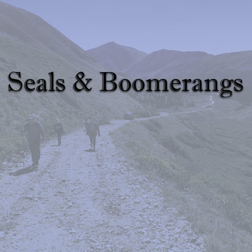 Seals & Boomerangs
