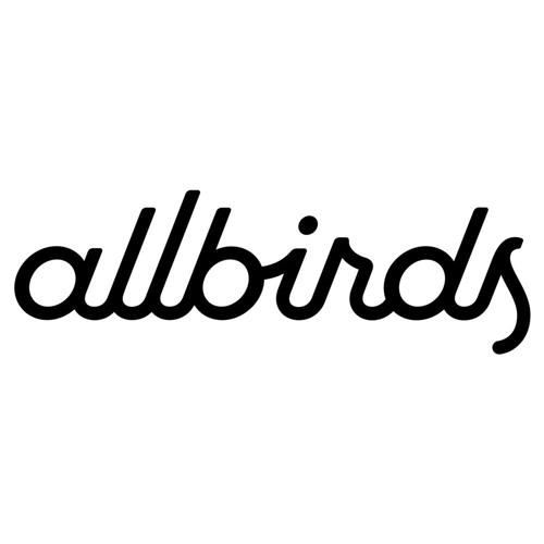 Allbirds Elevator Pitch