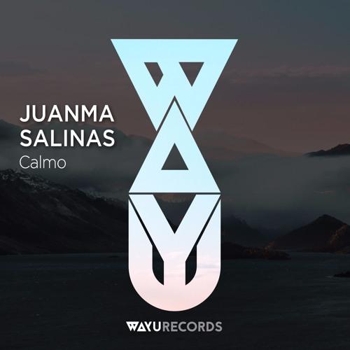 Juanma Salinas - Calmo EP (Preview)