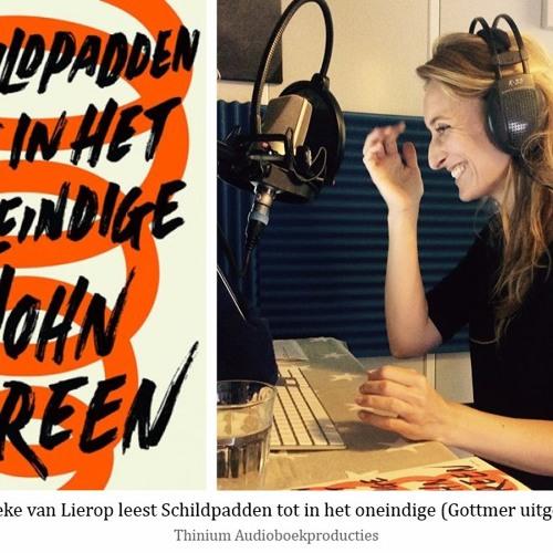 Schildpadden tot in het oneindige - John Green, voorgelezen door Geerteke van Lierop