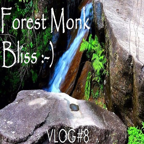 Guided Meditation on Forest Bliss