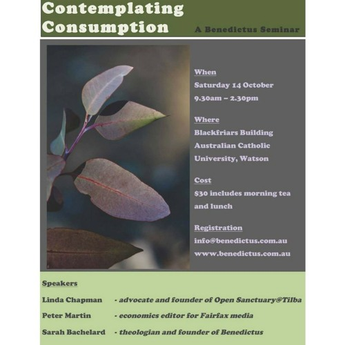 Talk by Sarah Bachelard on Contemplating Consumption