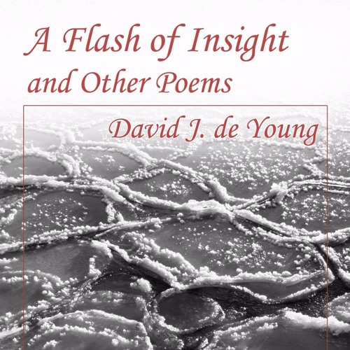 A Flash of Insight