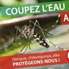 21-11 Le moustique Tigre #actions de l'ARS et Cap Science dans les écoles