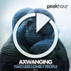 Axwanging - Two Less Lonely People (Radio Edit)