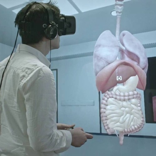 The pros and cons of anatomy class in virtual reality