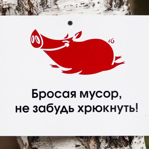 подбором картинка не будь свиньей не бросай мусор статьяпоздравляю