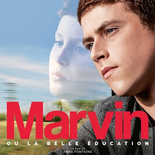 Marvin ou la Belle éducation - Barbara Govaerts