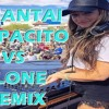DJ SANTAI DESPACITO VS ALONE REMIX 2018 (((( PALING ENAK BROO SEDUNIA )))) mp3