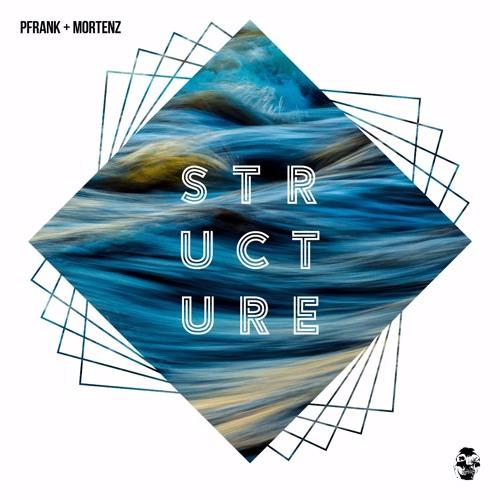 Pfrank & Mortenz - Structure (Original Mix)