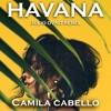 Camila Cabello - Havana (JULIO DVNO REMIX)free download