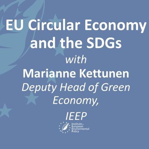EU circular economy and the SDGs with Marianne Kettunen (IEEP)