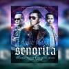 Syamsul Yusof & Dato AC Mizal ft. Shuib - Senorita (Muaz Remix)