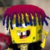 Spongeocide