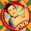 Pink - Raise Your Glass (Feestfanaten Bootleg)