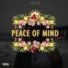 Tok Sik - Peace Of Mind ( Feat Kannon & Alef )
