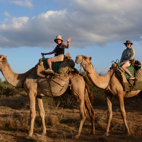 Sandy Wood chats about East African safari options.